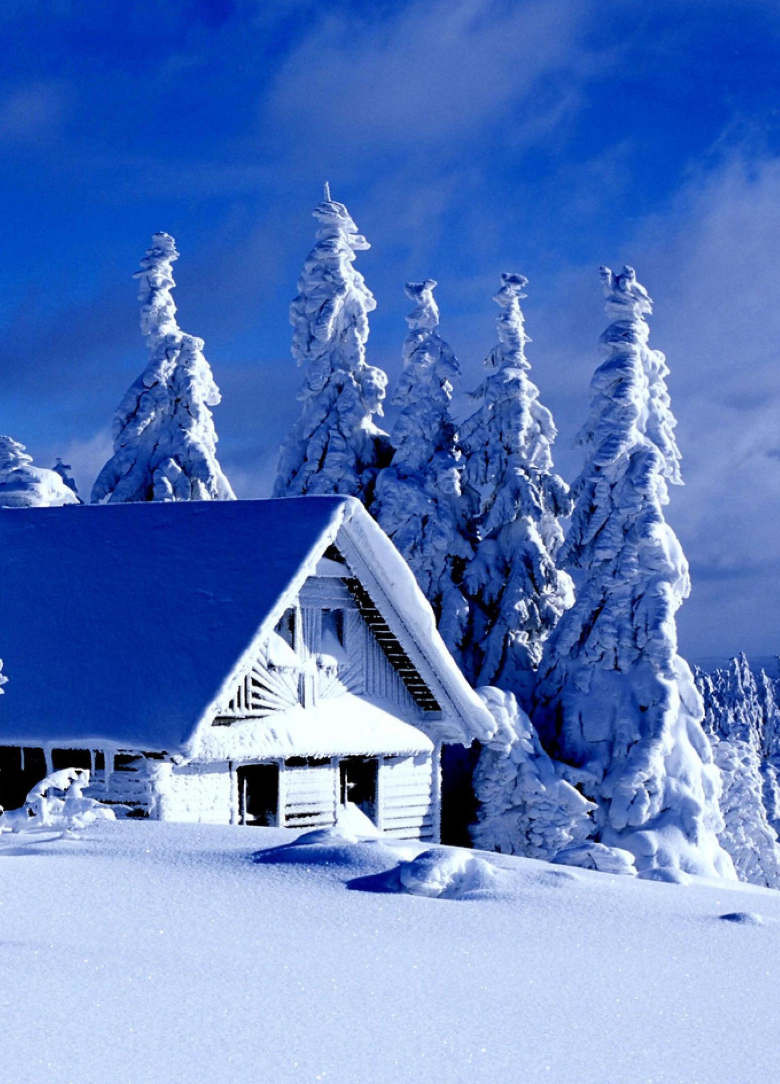 Новогоднее приключение в Резиденции Деда Мороза