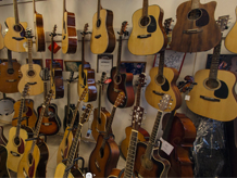 Гитары в Вологде для любителей и профессионалов