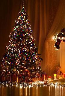Новогодняя ночь «Зимняя сказка»
