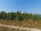 Андреевский перевал