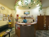 Исцеление, центр восточной медицины