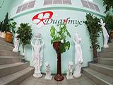 Диантус на Коростелевых, цветочный магазин