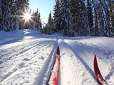 Главная лыжная трасса